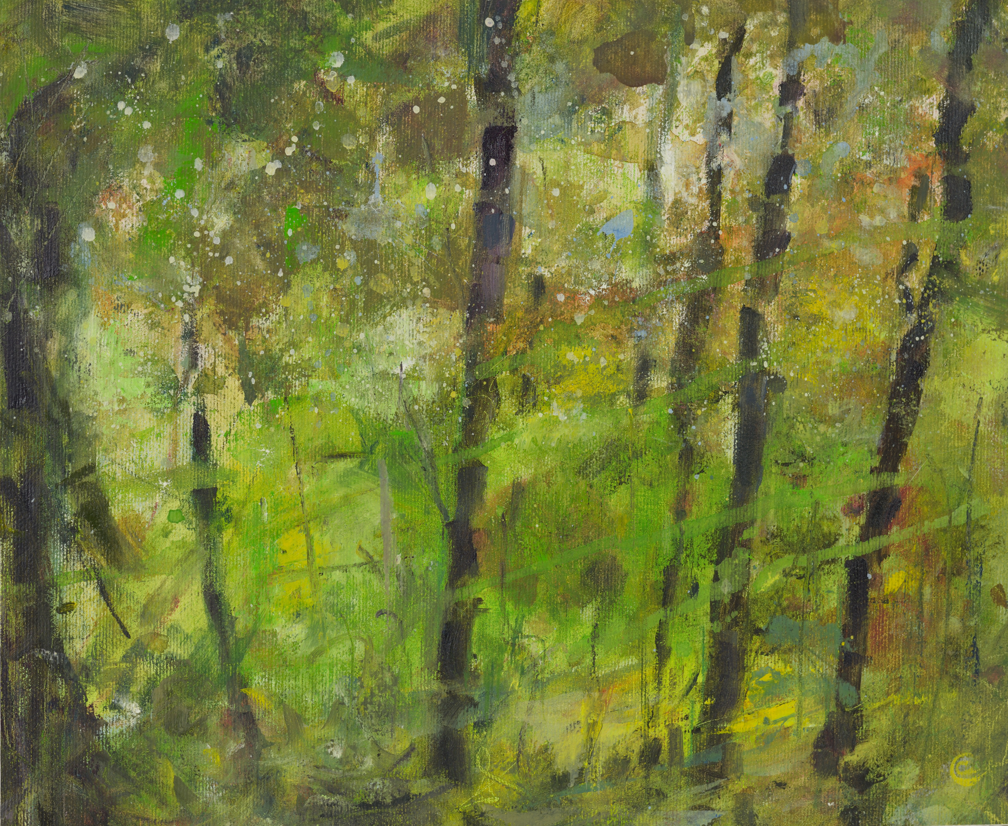 a photograph of an oil painting title 'Forest Trunks' by artist Catherine Coulson © 2014 Catherine Coulson
