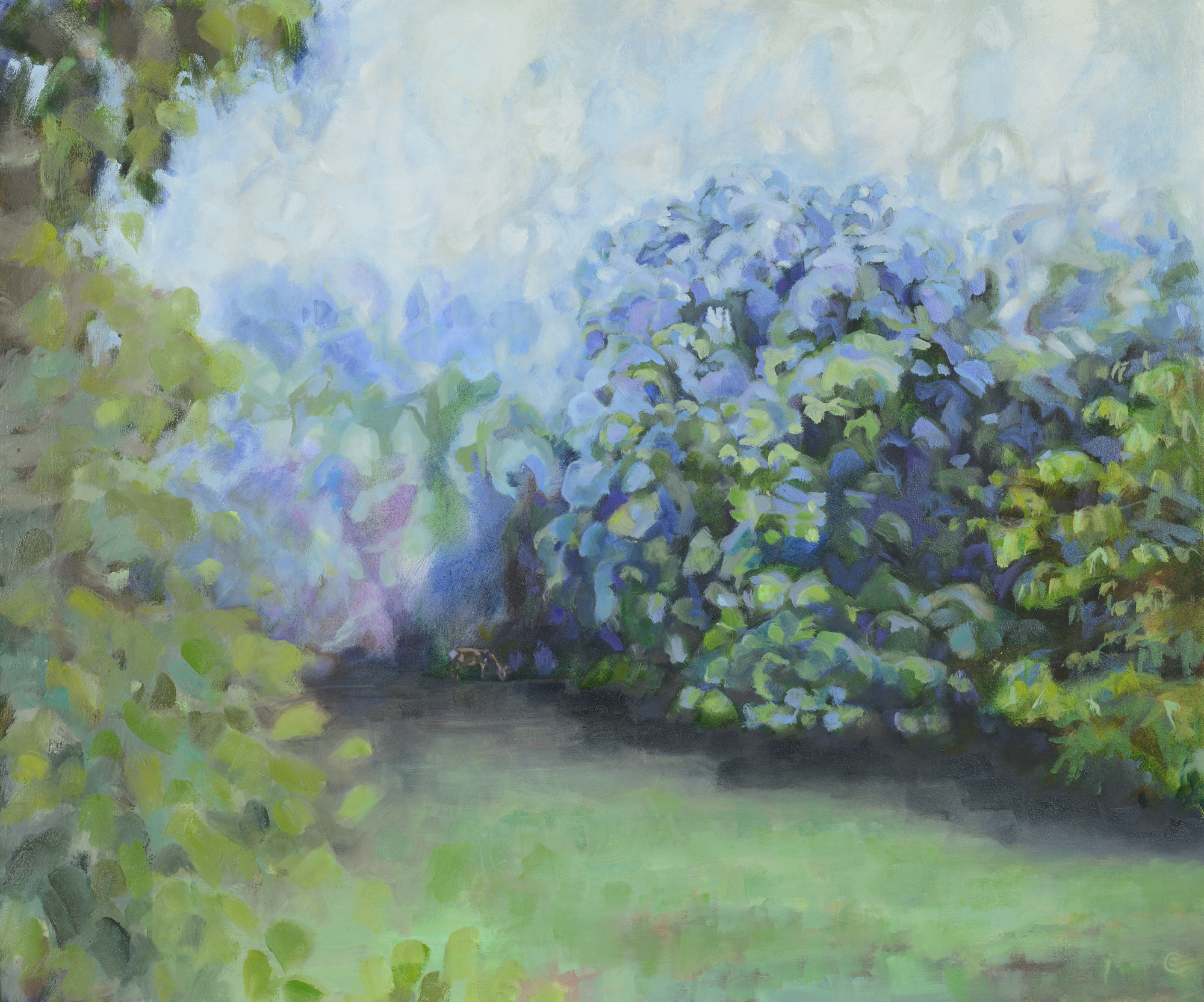 Catherine Coulson | Orchard Mist, Towards the Ash Tree | 2018 | oil on board | 20x24in