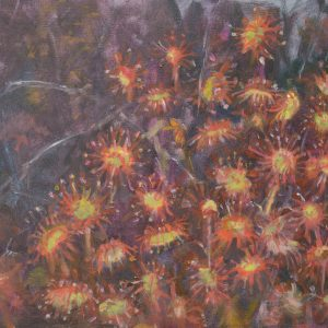 a photograph of an oil painting title 'Round-leaved sundew, Kirkconnell Flow' by artist Catherine Coulson © 2018 Catherine Coulson