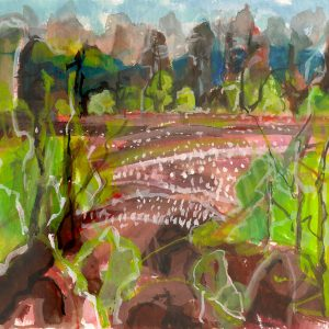 a photograph of a gouache painting title 'Bog Cotton, Kirkconnell Flow' by artist Catherine Coulson © 2019 Catherine Coulson