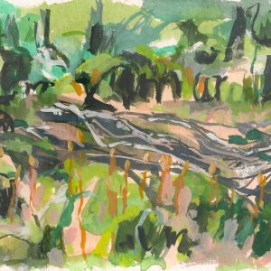 a photograph of a gouache painting title 'Moss and Sticks' by artist Catherine Coulson © 2019 Catherine Coulson