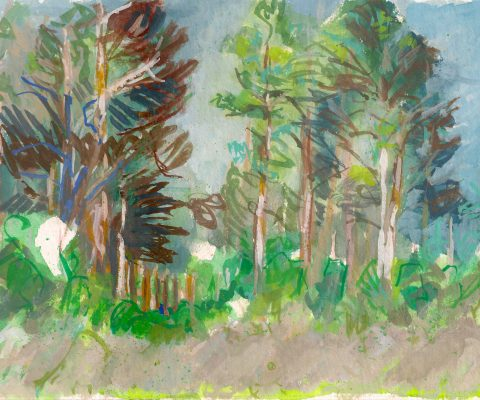a photograph of a gouache painting title 'Scots Pines, Bog Edge, Kirkconnell Flow' by artist Catherine Coulson © 2019 Catherine Coulson