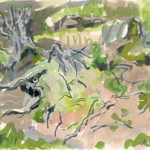 a photograph of a gouache painting title 'Sphagnum Mound, Summer, Kirkconnell Flow' by artist Catherine Coulson © 2019 Catherine Coulson