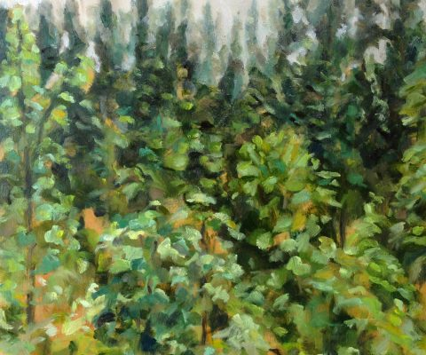 a photograph of an oil painting title 'Scots Pines' by artist Catherine Coulson © 2014 Catherine Coulson