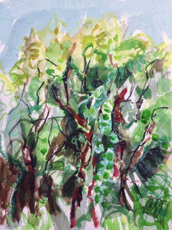 photograph of a gouache painting 'Orchard Woodland' by Catherine Coulson © 2019 catcoulson.art