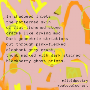 a poem about lichen on a pink and yellow patterned digital artwork image © Catherine Coulson catcoulson.art