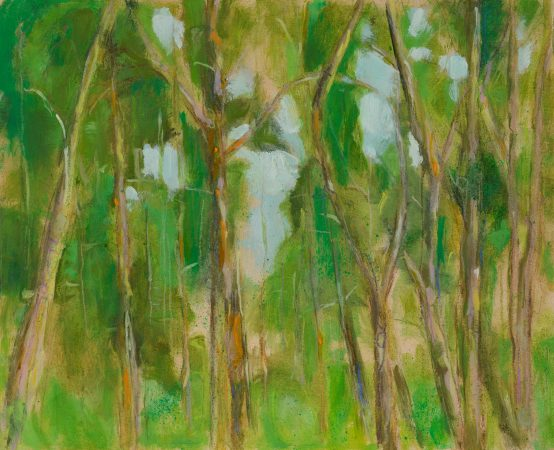 Catherine Coulson | Treetops, Carstramon Wood | 2018 | 9x11in | oil on board
